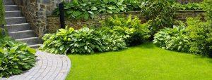 garden lawn 300x114 - garden-lawn