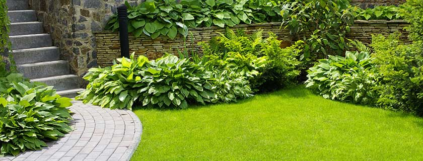 Green garden lawn with stone steps
